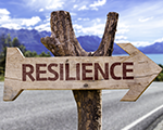 Bereik IT Resilience met Zerto Virtual Replication en Microsoft Azure gratis downloaden